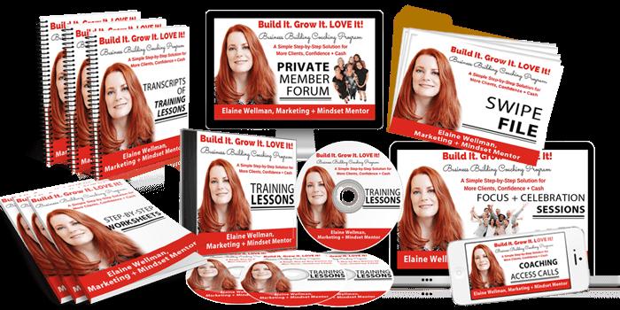 brandapex media course bundle designs